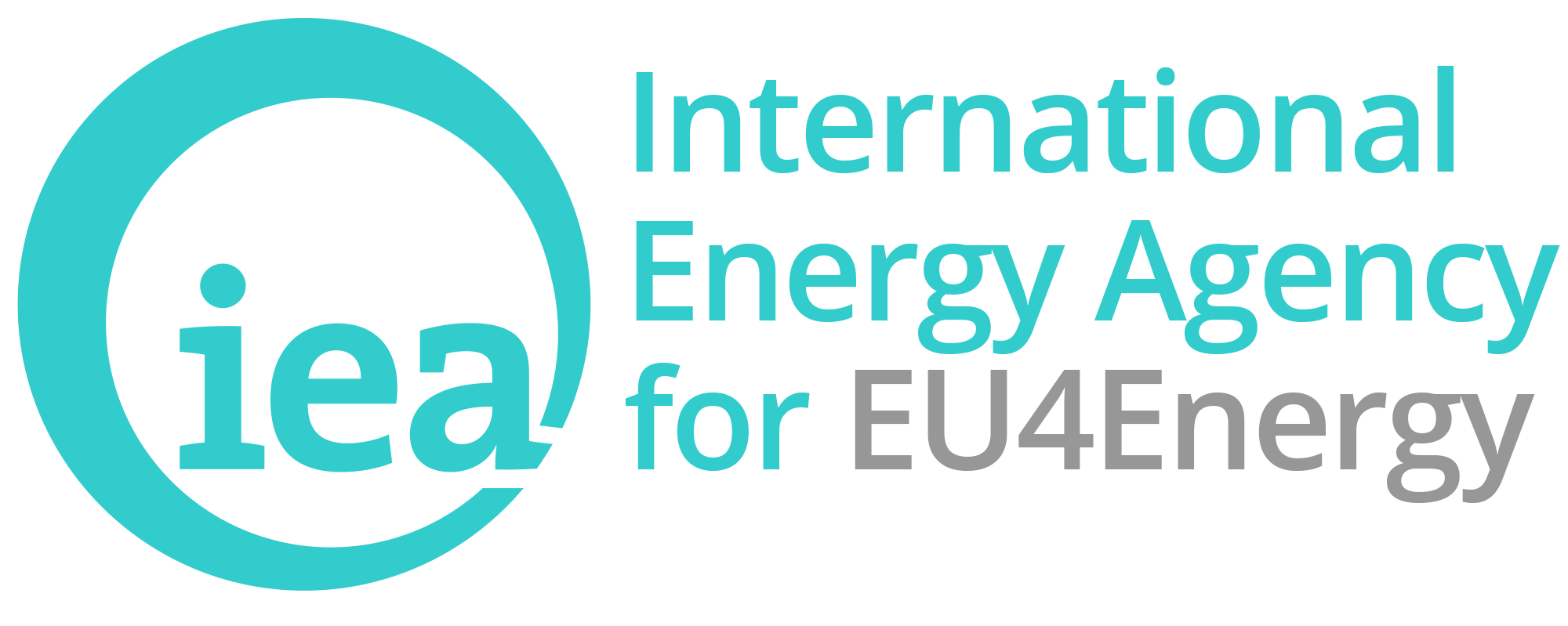 iea for Eu4Energy